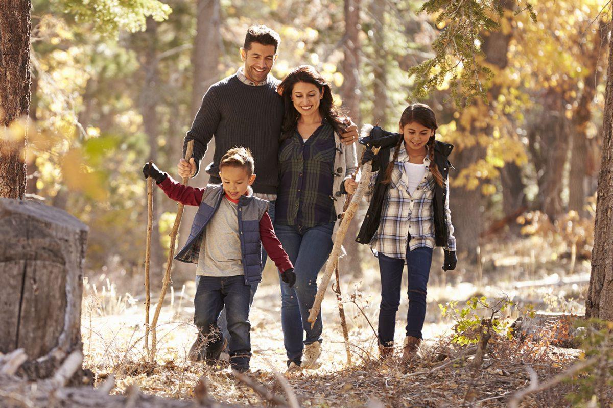 Famille en promenade dans la forêt, profitant de la nature et du calme - 1320x880