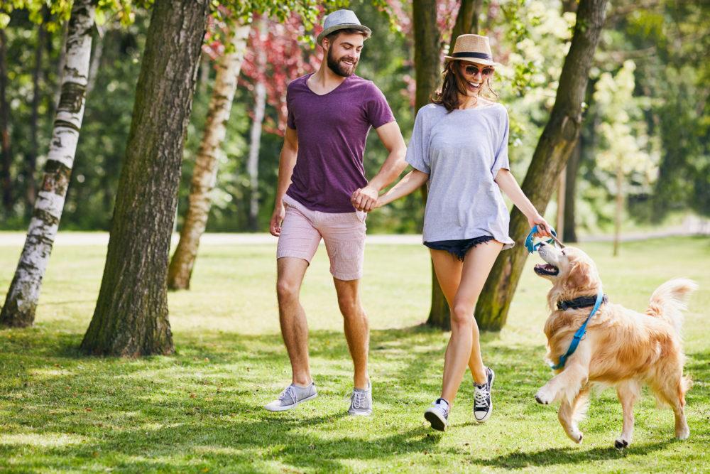 Jeune couple courant et jouant avec leur chien durant une promenade dans un parc