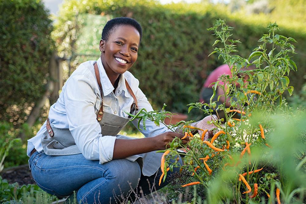 Femme qui jardine des plantes naturelles
