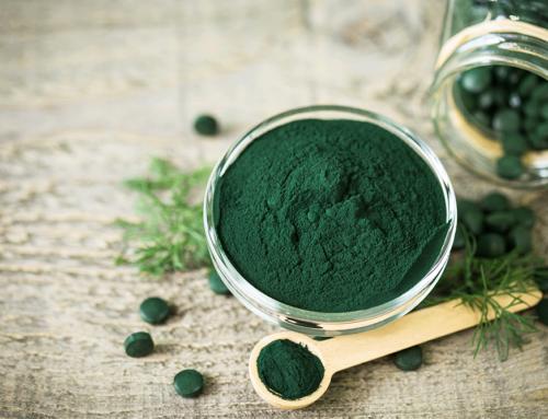 La spiruline, l'algue miracle aux multiples vertus